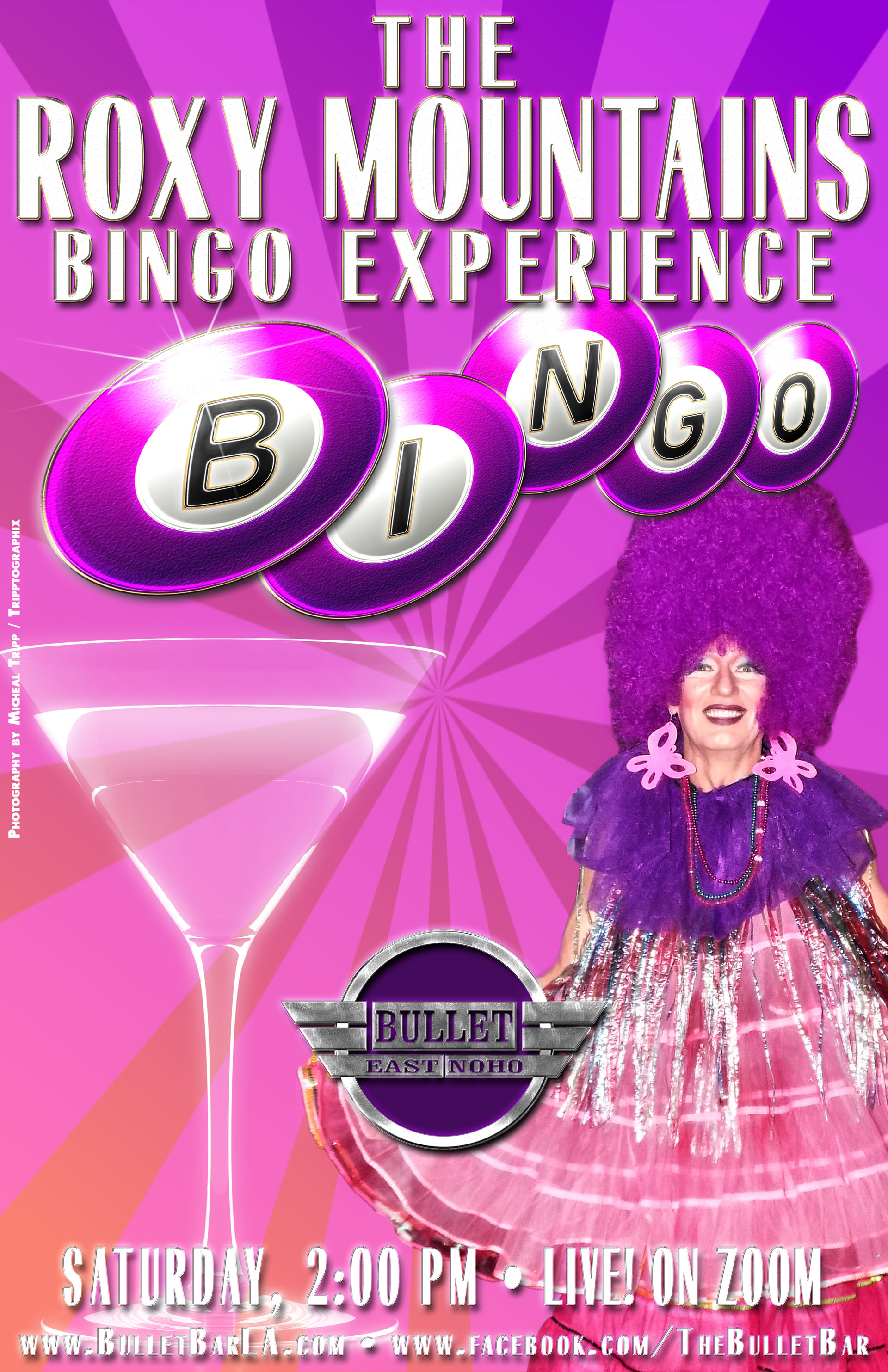 The Bullet Bar Presents THE ROXY MOUNTAINS BINGO ONLINE EXPERIENCE with ROXY MOUNTAINS: August 22, 2020 at 2PM! LIVE! on ZOOM!